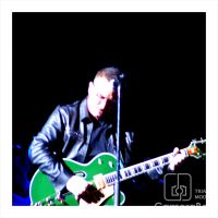 Copy_of_Bono_Green_Guitar.jpg