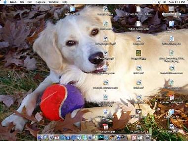 desktop-pic.jpg